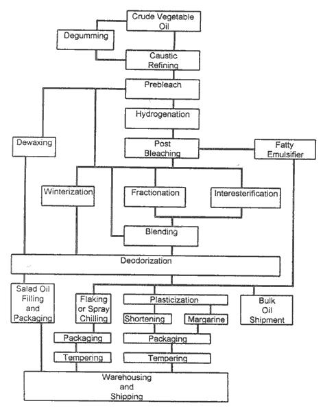 canola oil process